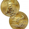 2013 $5 1/10 Oz Gold American Eagle SKU27329 for $177.31