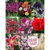 Holland Bulb Farms Grab Bag 177 bulbs for $40 shipped