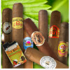 Imported Handmade Artisan Cigar Sampler from Mike's Cigars of Miami w/Special Cuban Art Lighter Bonus Gift! for $24.99